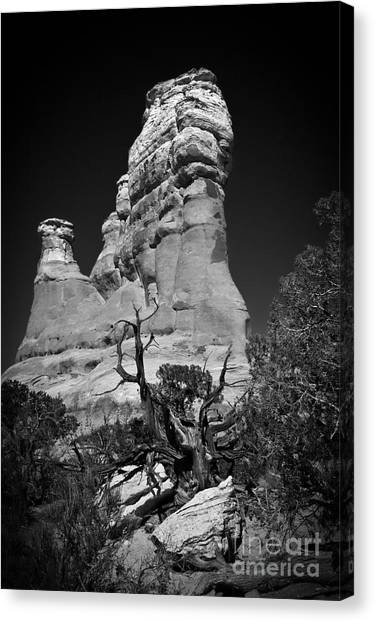 Arches National Park Bw Canvas Print