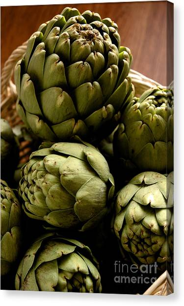 Artichoke Canvas Print - Artichoke by HD Connelly