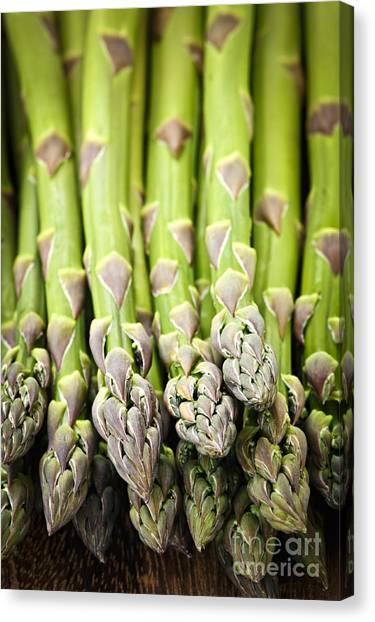 Asparagus Canvas Print - Asparagus by Elena Elisseeva