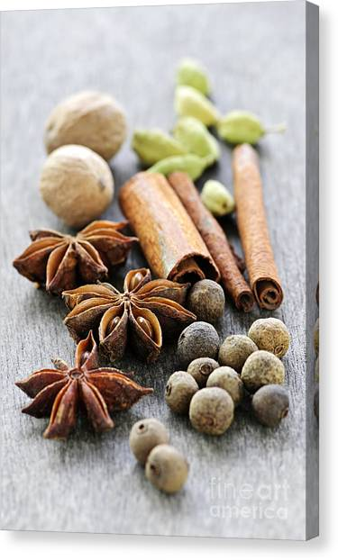 Nutmeg Canvas Print - Assorted Spices by Elena Elisseeva