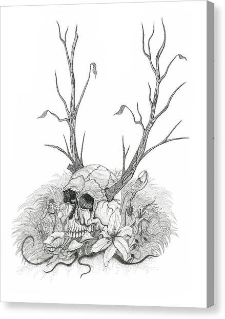 Bad Seed Canvas Print by Jeff Gould