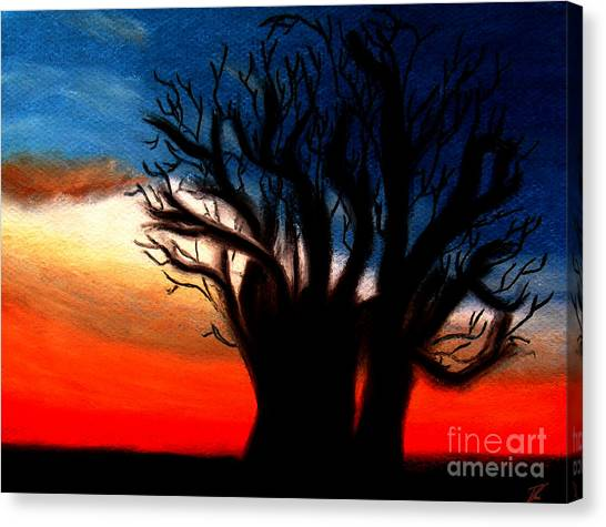 Baobab Tree Canvas Print