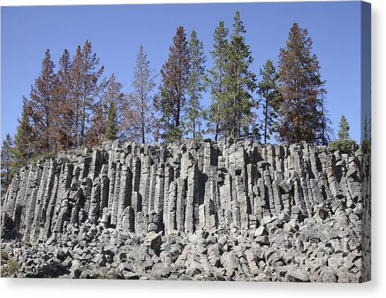 Yellowstone Caldera Canvas Print - Basalt Columns Formed By Cooling Lava by Richard Roscoe