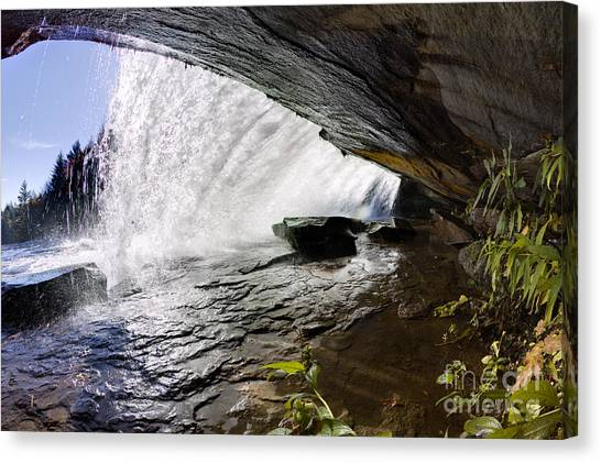 Bridal Canvas Print - Behind Bridal Veil Falls In Dupont State Park Nc by Dustin K Ryan