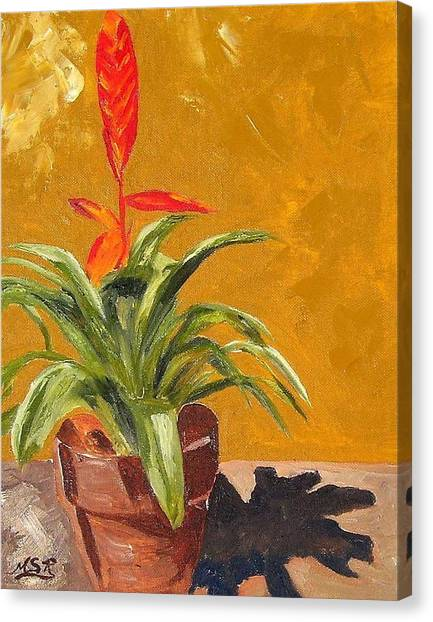 Bromeliad Vriesea Canvas Print by Maria Soto Robbins