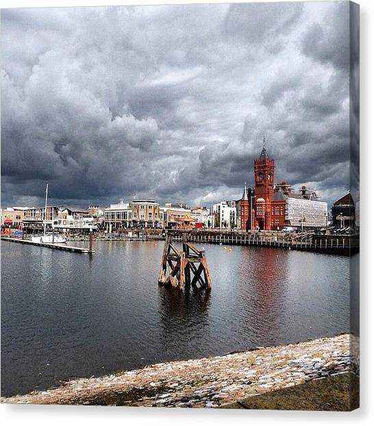 Dolphins Canvas Print - Cardiff Bay by Hello Gorgeous