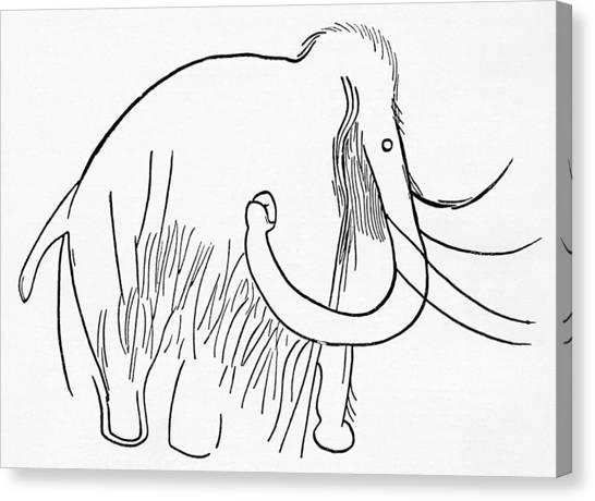 Mammoth Cave Canvas Print - Cave Painting Of A Mammoth, Artwork by Sheila Terry