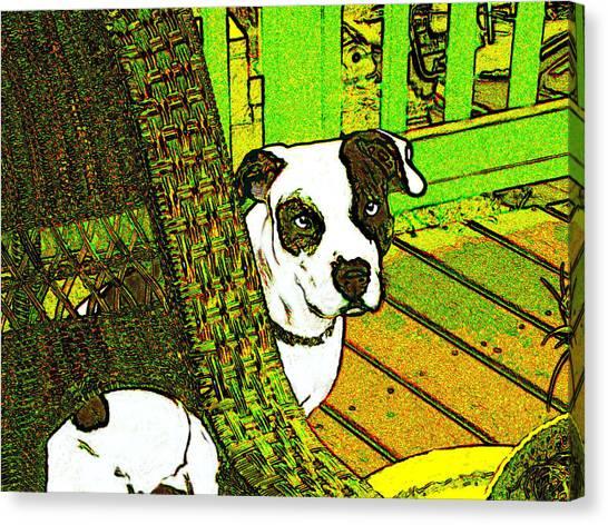 Charlie Bear Canvas Print by Jann Paxton