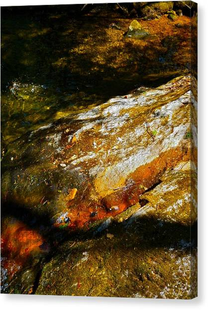 Childs Brook Shadows 4 Canvas Print by George Ramos