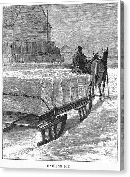 Sleds Canvas Print - Cutting Ice, C1870 by Granger