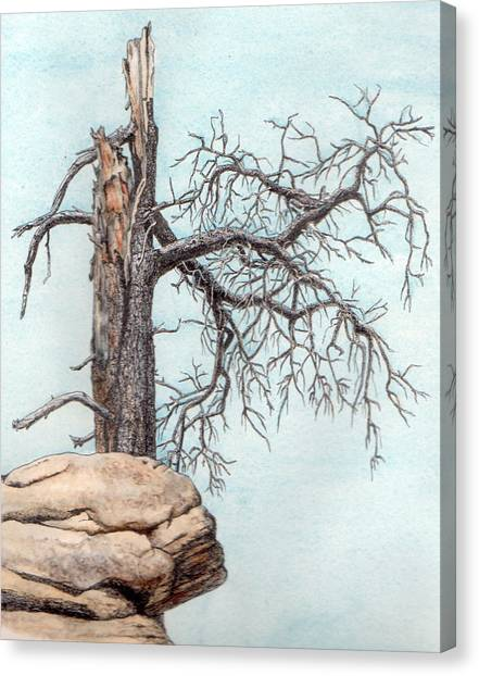 Dead Tree Canvas Print by Inger Hutton