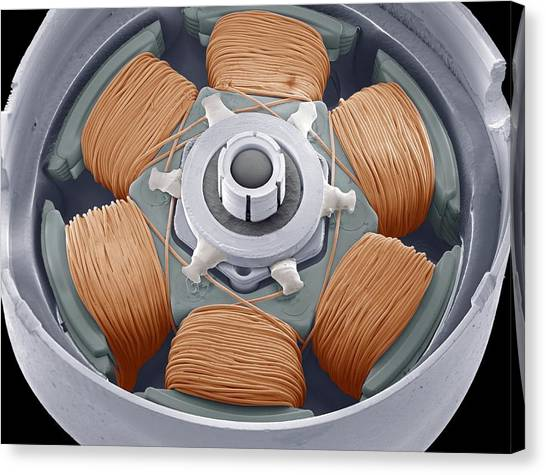 Dvd Drive Motor, Sem Canvas Print by Steve Gschmeissner
