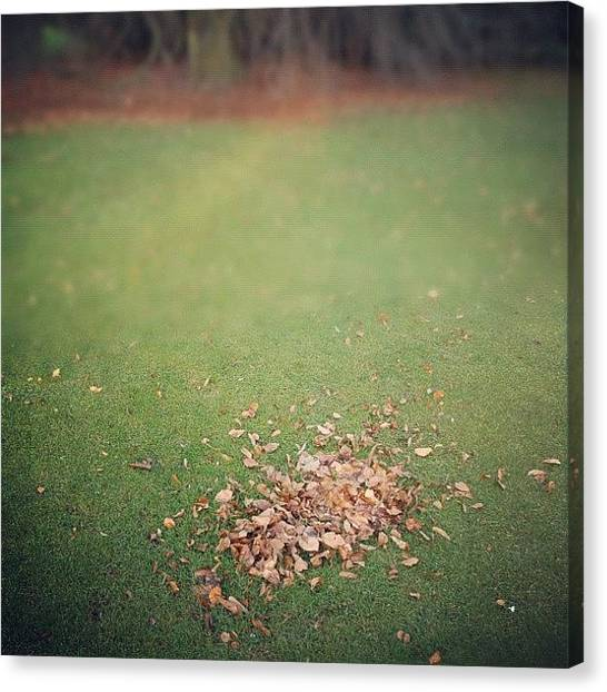Autumn Leaves Canvas Print - Empty Lawn With A Little Heap Of Leaves Scraped Together by Matthias Hauser