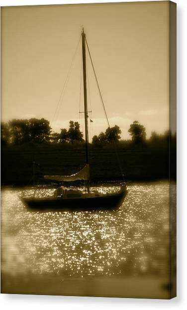 Evening Sail Canvas Print by Jez C Self