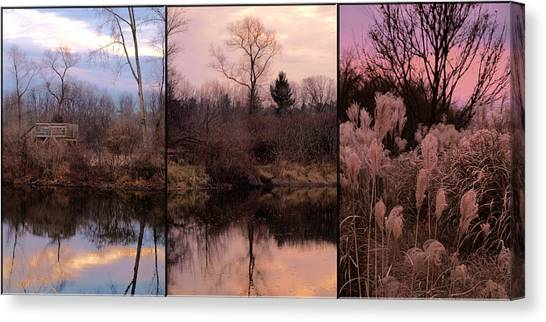 Fading Light Canvas Print by Christy Woods