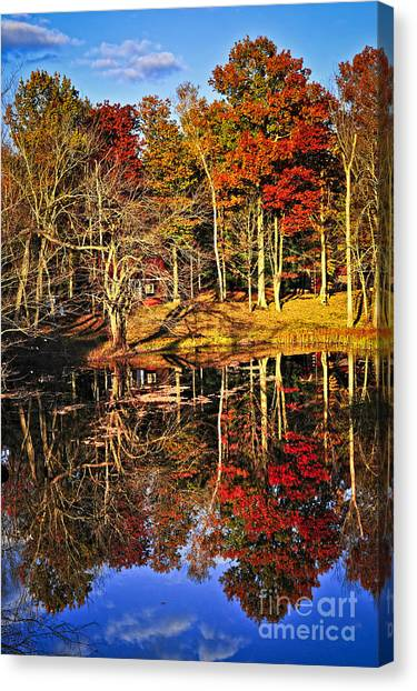 Algonquin Park Canvas Print - Fall Forest Reflections by Elena Elisseeva