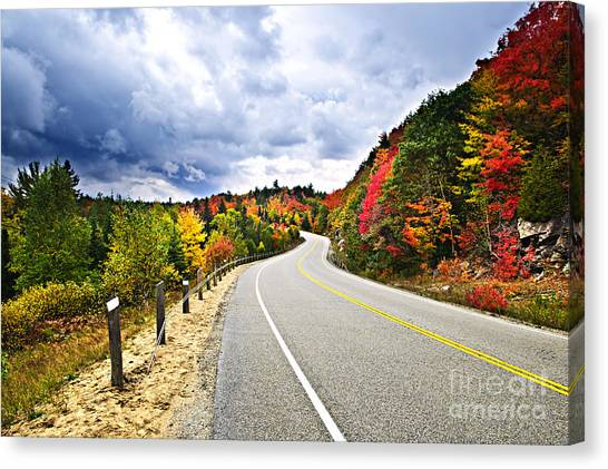Road Canvas Print - Fall Highway by Elena Elisseeva
