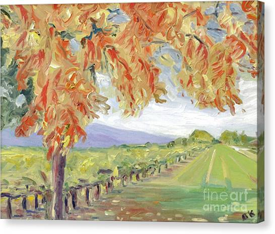 Fall In Napa Valley Canvas Print