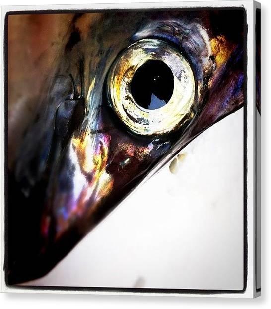 Eyes Canvas Print - Fishy by Robbert Ter Weijden