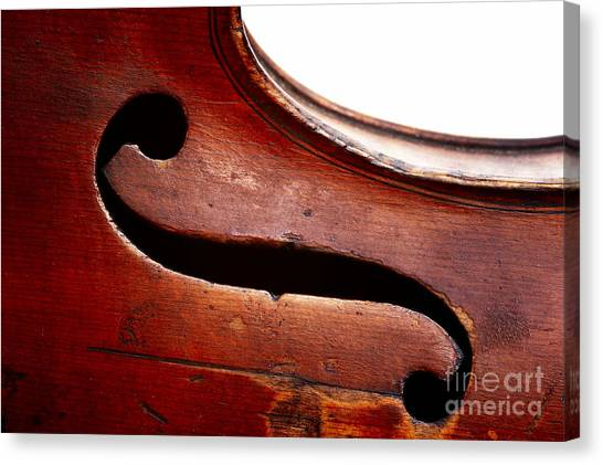 Violins Canvas Print - G Clef by Michal Boubin