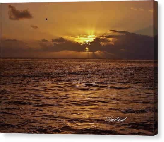 Glorious Morning Canvas Print