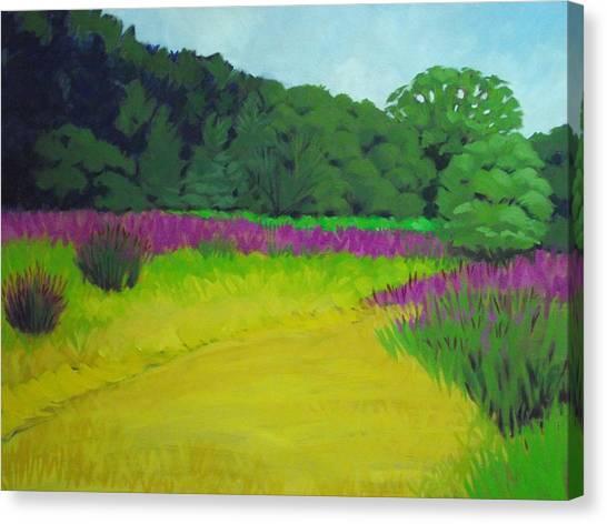 Golden  Meadow Canvas Print by Robert Rohrich