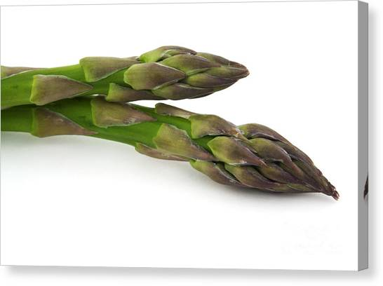 Asparagus Canvas Print - Green Asparagus by Blink Images