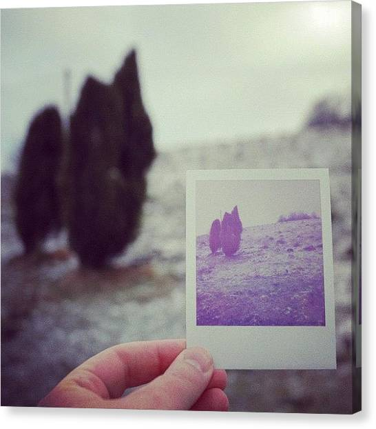 Hands Canvas Print - Hand Holding Polaroid - Concept Image For Memory Or Time Or Past by Matthias Hauser