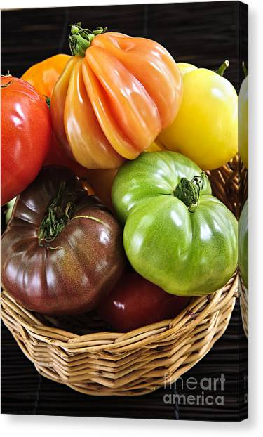 Fruit Baskets Canvas Print - Heirloom Tomatoes by Elena Elisseeva