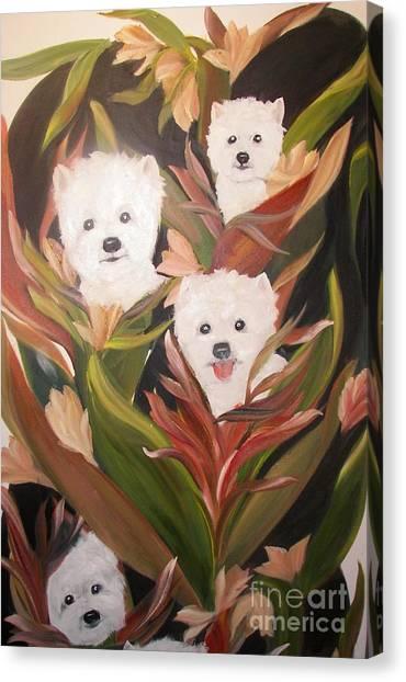 Home Grown Westies Canvas Print