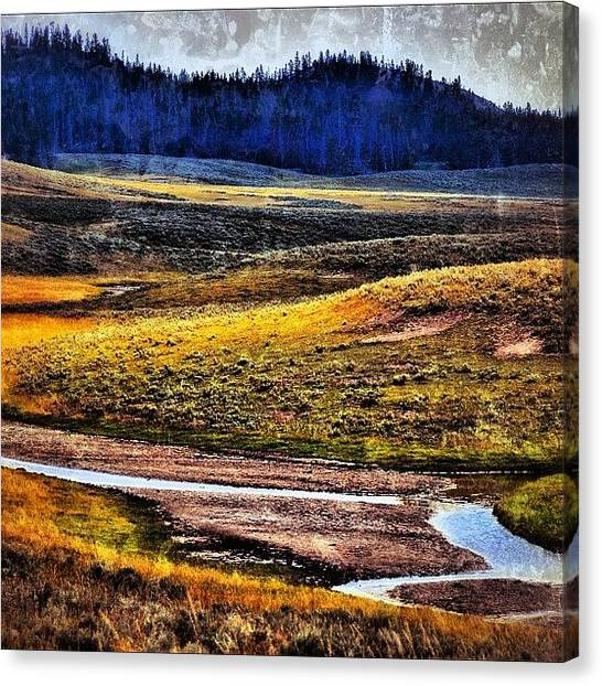 Wyoming Canvas Print - Home, Home On The Range. Yellowstone by Chris Bechard