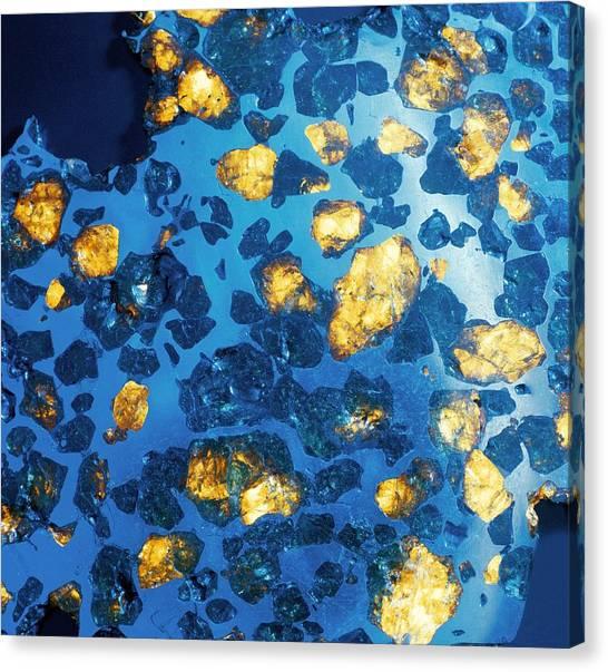 Imilac Meteorite Sample Canvas Print by Detlev Van Ravenswaay