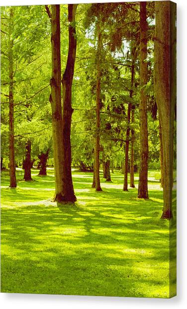 In The Park Canvas Print by Design Windmill