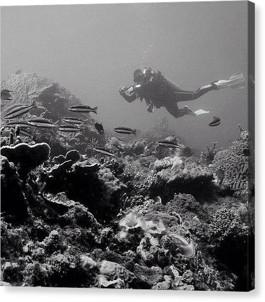 Scuba Diving Canvas Print - #instanusantara by Asep Dedo Dep