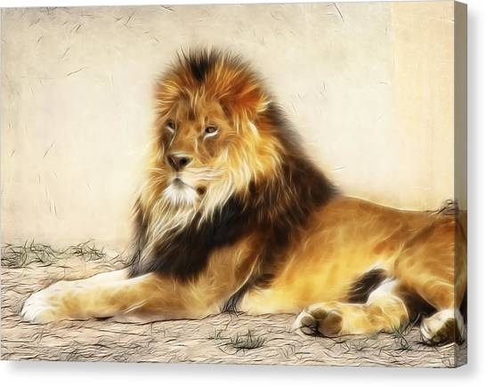 King Canvas Print by Tilly Williams