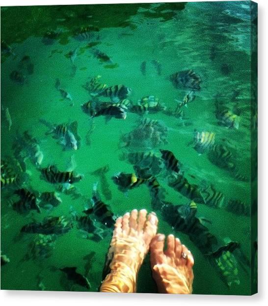 Feet Canvas Print - Lagoa Azul - Ilha Grande - Rj - Brasil by Avatar Pics