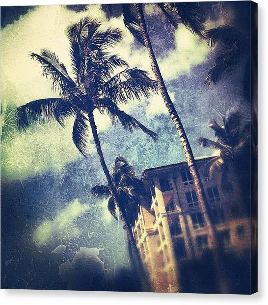 Palm Trees Canvas Print - Laying In The Sun by Jody Robinson