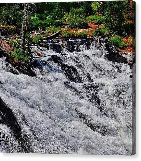 Wyoming Canvas Print - Lewis Falls, Yellowstone. #waterfall by Chris Bechard