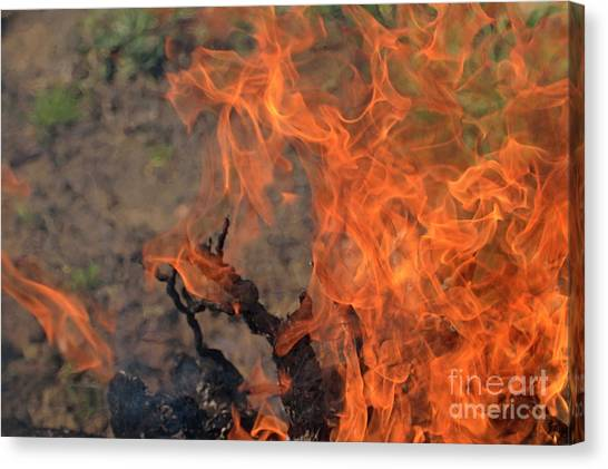Log Fire And Flames Canvas Print by Sami Sarkis