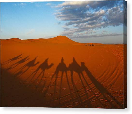 Merzouga Desert Morocco Canvas Print by Ian Stevenson