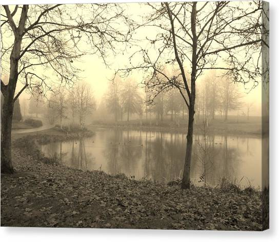 Mist Canvas Print by Amy Norden
