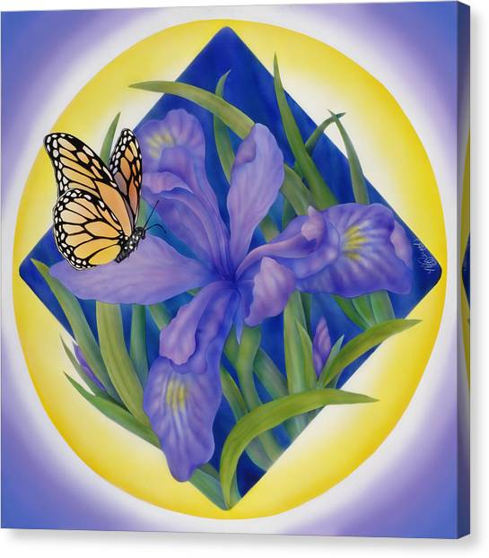 Monarch Butterfly And Iris Canvas Print by Marcia  Perry