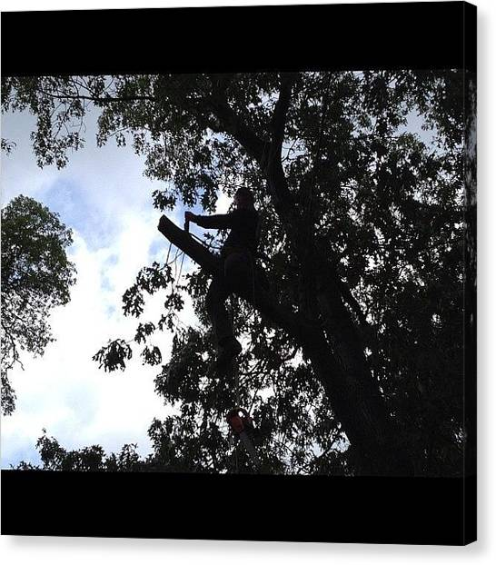 Saws Canvas Print - My Bro In Law Cutting Tree Limbs #tree by Danielle Mcneil