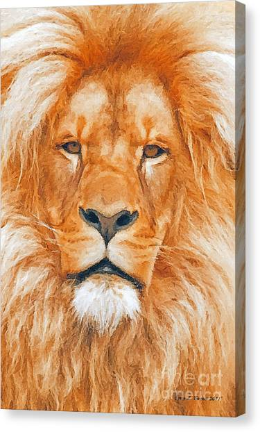 Old Lion Canvas Print