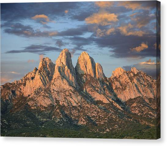 Mountain Ranges Canvas Print - Organ Mountains Near Las Cruces New by Tim Fitzharris