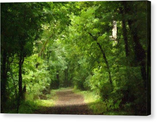 Path To Serenity Canvas Print by Shellie and Steve Hill