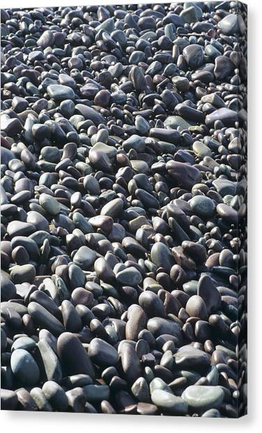 Pebbles On A Beach Canvas Print by David Aubrey