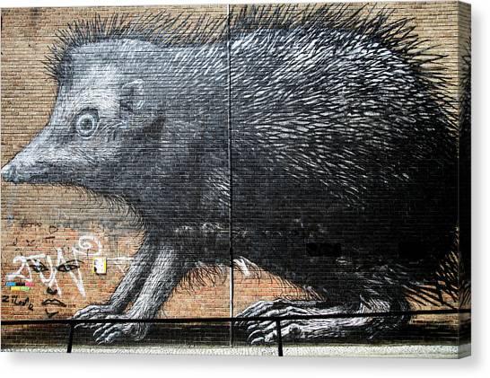 Prickly Days Canvas Print by Jez C Self