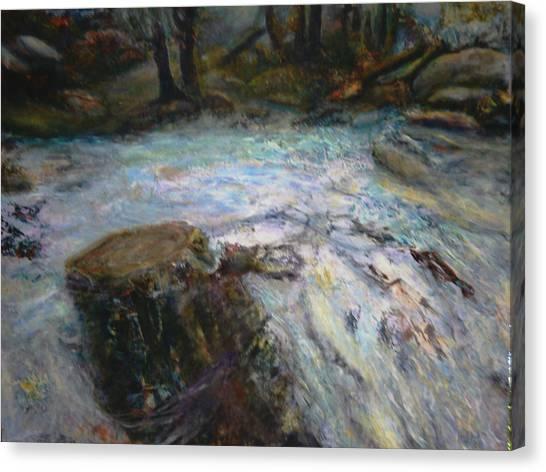 Raging River Canvas Print by Sylva Zalmanson