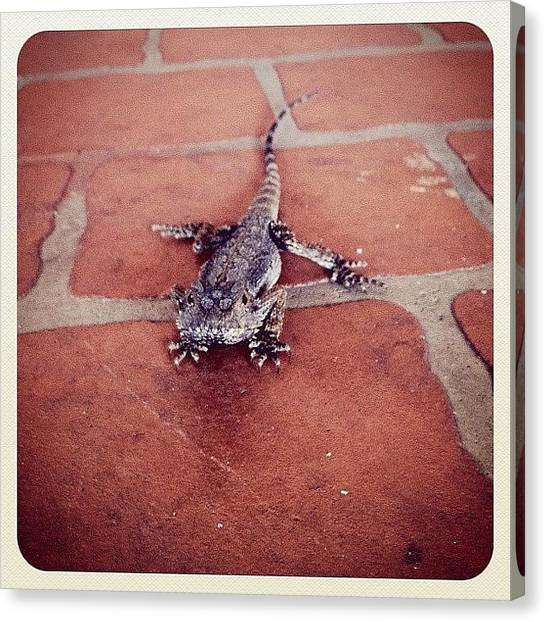 Dragons Canvas Print - #random #fun #iphone4s #iphone #iphone4 by Stealth One